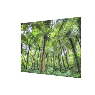 View of vegetation in Bali Botanical Gardens, Canvas Print