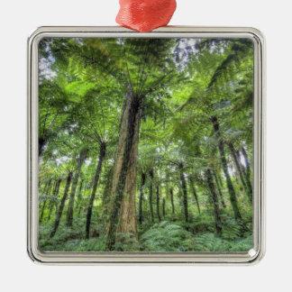 View of vegetation in Bali Botanical Gardens, Christmas Ornament