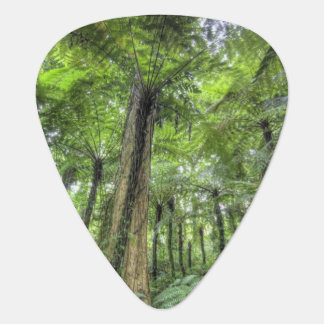 View of vegetation in Bali Botanical Gardens, Guitar Pick