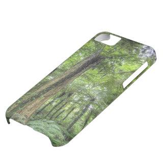 View of vegetation in Bali Botanical Gardens, iPhone 5C Case