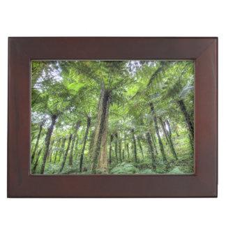 View of vegetation in Bali Botanical Gardens, Keepsake Box