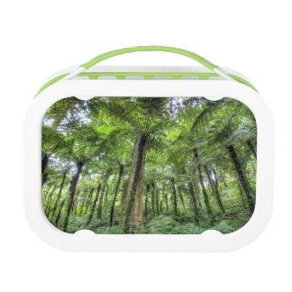 View of vegetation in Bali Botanical Gardens, Lunch Box