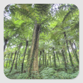 View of vegetation in Bali Botanical Gardens, Square Sticker