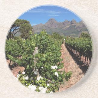 View Of Vineyards. Stellenbosch Coaster
