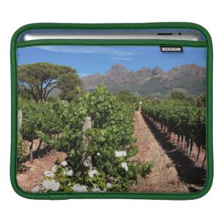 View Of Vineyards. Stellenbosch iPad Sleeve