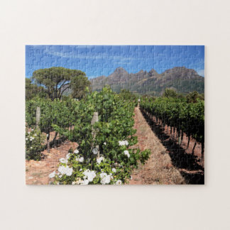 View Of Vineyards. Stellenbosch Jigsaw Puzzle