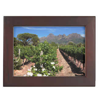 View Of Vineyards. Stellenbosch Keepsake Box