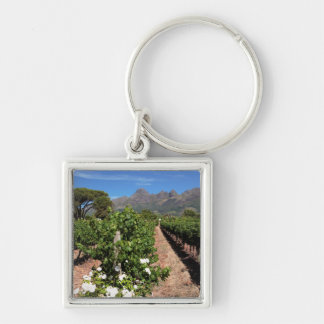 View Of Vineyards. Stellenbosch Key Ring