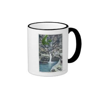 View of Whispering Falls Mugs