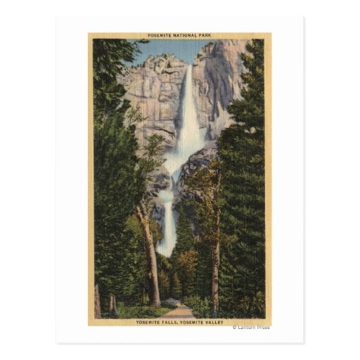 View of Yosemite Falls & Valley Post Card