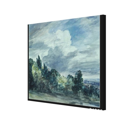 View over a wide landscape, with trees in the fore canvas print