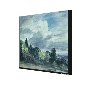 View over a wide landscape, with trees in the fore gallery wrap canvas