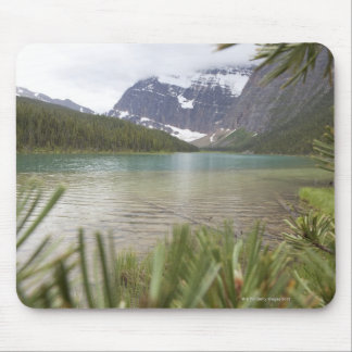 View past pine branches to mountain lake mouse mat
