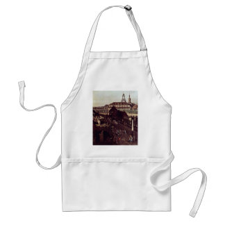 View The Fortifications Of Dresden In Dresden Moat Standard Apron