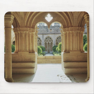 View towards the cloister from the Chapter Mouse Mat