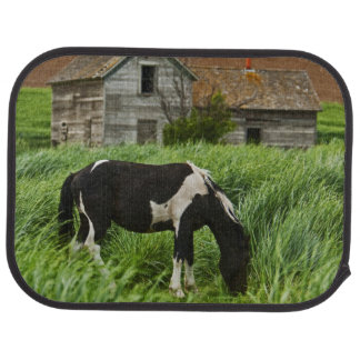 Viewing horses in a field in the Palouse 2 Car Mat