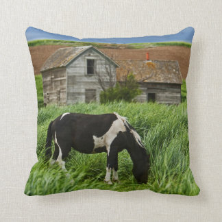 Viewing horses in a field in the Palouse 2 Cushion