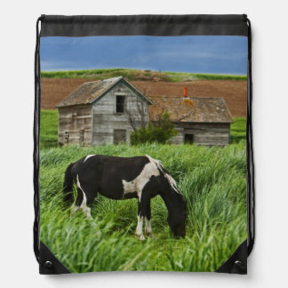 Viewing horses in a field in the Palouse 2 Drawstring Bag