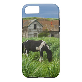 Viewing horses in a field in the Palouse 2 iPhone 8/7 Case