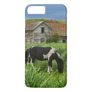 Viewing horses in a field in the Palouse 2 iPhone 8 Plus/7 Plus Case
