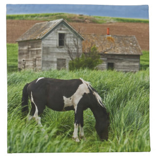 Viewing horses in a field in the Palouse 2 Napkin