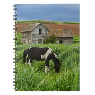 Viewing horses in a field in the Palouse 2 Notebook