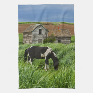 Viewing horses in a field in the Palouse 2 Tea Towel