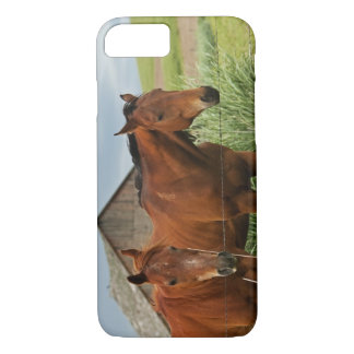 Viewing horses in a field in the Palouse 3 iPhone 8/7 Case