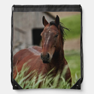 Viewing horses in a field in the Palouse Drawstring Bag