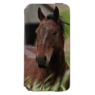Viewing horses in a field in the Palouse Incipio Watson™ iPhone 6 Wallet Case
