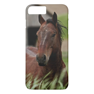 Viewing horses in a field in the Palouse iPhone 8 Plus/7 Plus Case