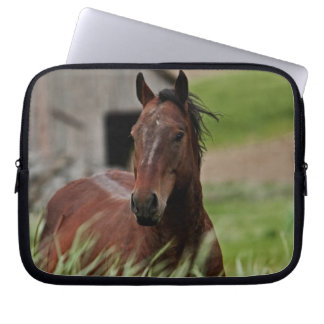 Viewing horses in a field in the Palouse Laptop Sleeve