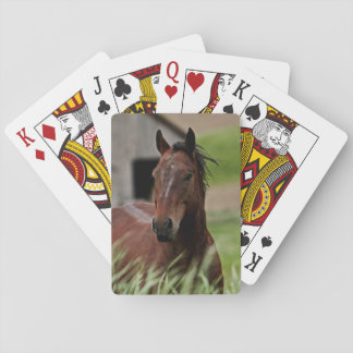Viewing horses in a field in the Palouse Playing Cards