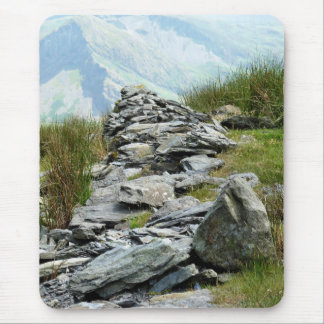 VIEWS OF WALES MOUSE MAT
