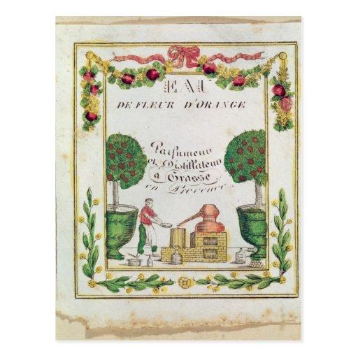Vignette of 'Eau de Fleur d'Orange' Post Cards