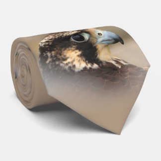 Vignetted Profile of a Peregrine Falcon Tie
