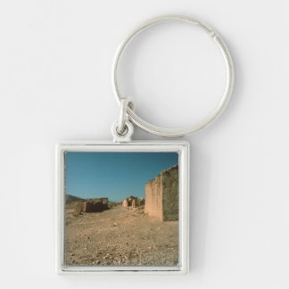 Village Street with Houses Key Ring