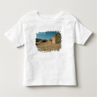 Village Street with Houses Toddler T-Shirt