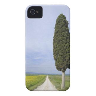 Ville di Corsano, Monteroni d'Arbia, Siena Case-Mate iPhone 4 Case