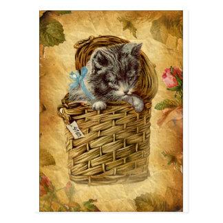 Vinatge image Cat in basket Card Post Cards
