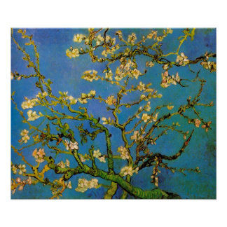 Vincent van Gogh Almond Branch, Post Impressionism Poster