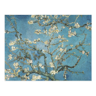 Vincent van Gogh | Almond branches in bloom, 1890 Postcard