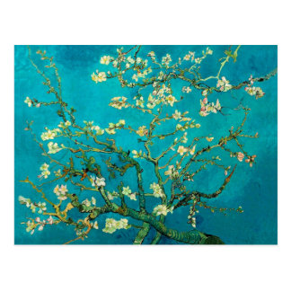 Vincent Van Gogh Blossoming Almond Tree Branches Postcard
