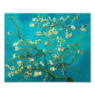 Vincent Van Gogh Blossoming Almond Tree Floral Art Photo Print