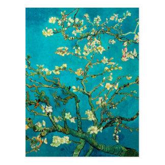 Vincent Van Gogh Blossoming Almond Tree Floral Art Postcard
