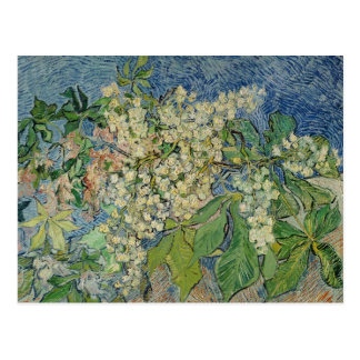 Vincent van Gogh | Blossoming Chestnut Branches Postcard