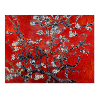 Vincent van Gogh Branches with Almond Blossom Postcard
