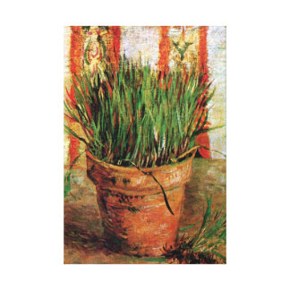 Vincent Van Gogh - Flowerpot With Chives Gallery Wrapped Canvas