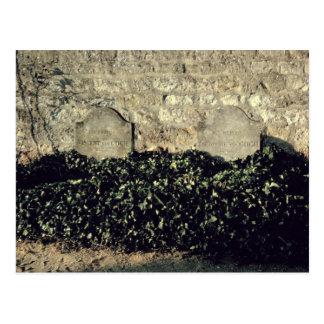 Vincent van Gogh | Graves, Vincent, Theo van Gogh Postcard