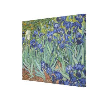 Vincent Van Gogh Irises Gallery Wrap Canvas